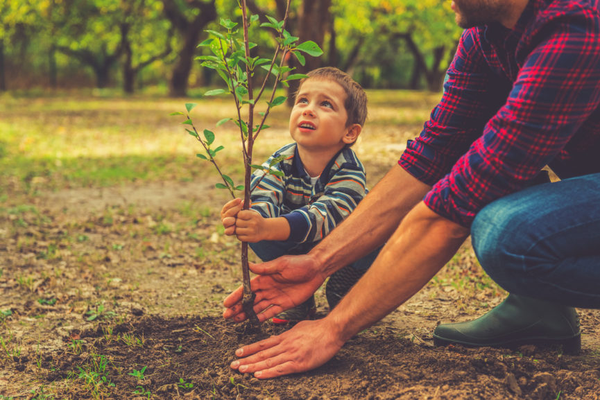 How to Garden With Small Children